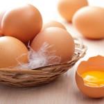 Патент недели: кости из яйца
