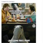 MDK занимается продвижением Burger King в соцсетях