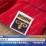 Puma заплатит китайской компании за использование «головы козла» в логотипе