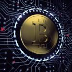 Будет ли криптовалюта включаться в конкурсную массу?