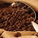 УФАС установило факт незаконного использования бренда сети кафе Prime
