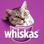 Возможность регистрации цвета упаковки Whiskas в качестве товарного  знака рассмотрит СИП