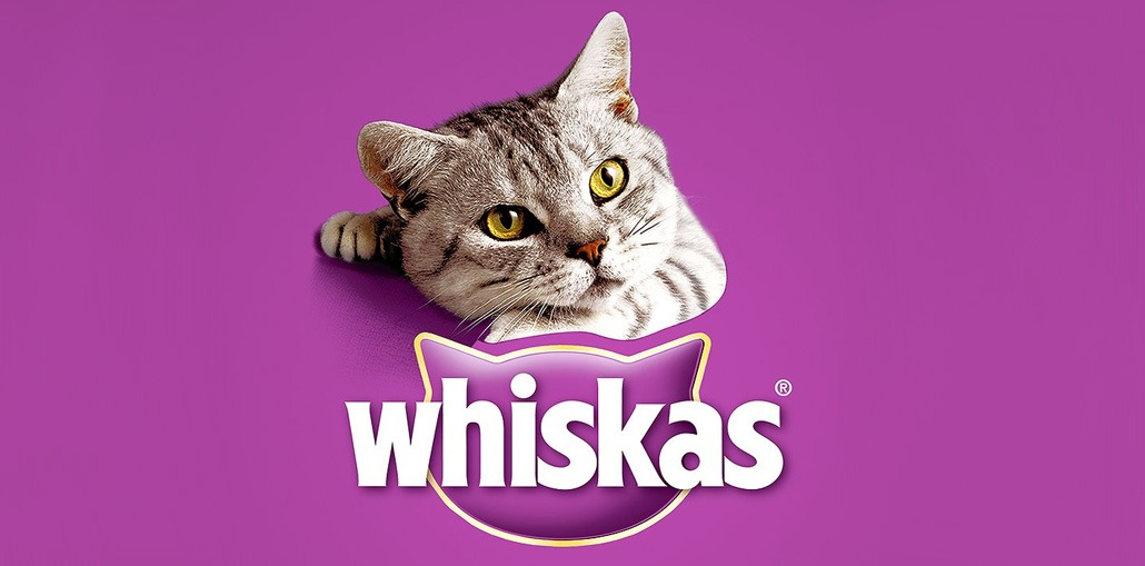 whiskas-1